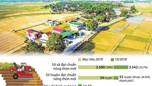 Nông thôn mới hoàn thành mục tiêu trước 3 tháng